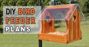 DIY Bird Feeder Plans.
