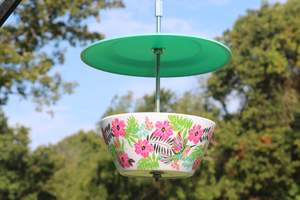 Easy DIY Blowl plate bird feeder