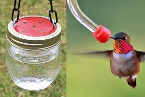 Homemade hummingbird feeder, DIY plans
