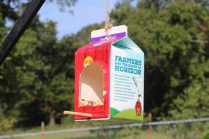 Milk carton recycled bird feeder