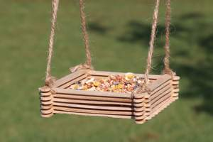 Popsicle stick wild bird feeder