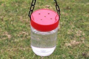 Homemade hummingbird feeder peanut butter jar or plastic container
