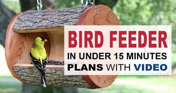 DIY Bird Feeder Plans (Homemade Log Birdfeeder)