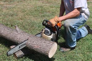 Use a chainsaw to cut a log to create your bird feed.