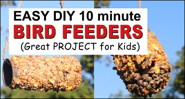 Peanut Butter Bird Feeder (Pine Cone or Recycled Toilet Paper Roll)