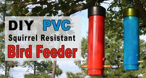 PVC Squirrel Resistant Bird Feeder.