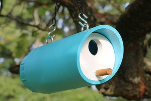 Bird Box Plans (Approved diy PVC Birdhouse Design)