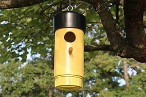Finished bird house (nesting box).