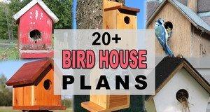 20+ Bird House Plans.
