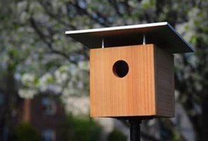 How to make a bird house.