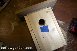 Simple DIY Bird house