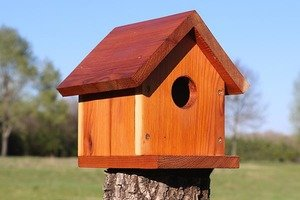 One-board DIY bird house or nesting box.
