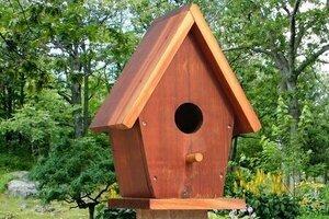 Free birdhouse plans, DIY homemade wooden nesting box, handmade birdhouse bluebirds, chickadees, sparrows, swallows, warblers, woodpeckers, wrens, backyard, garden.