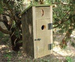 Outhouse style birdhouse