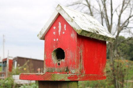 Birdhouse flat porch.