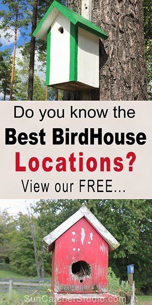 How to hang a birdhouse - including tips on placement, suitable nesting locations, and mounting a bird house.