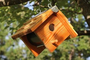 DIY wooden bird box mounted from a tree.