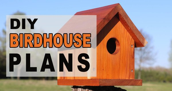 BirdHouse Plans (Easy One-Board DIY Project)
