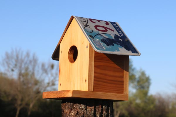 Bird house plans license plate.