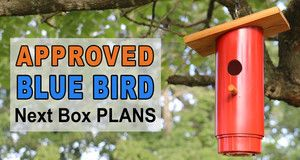 PVC Blue Bird Nest Box Plans.