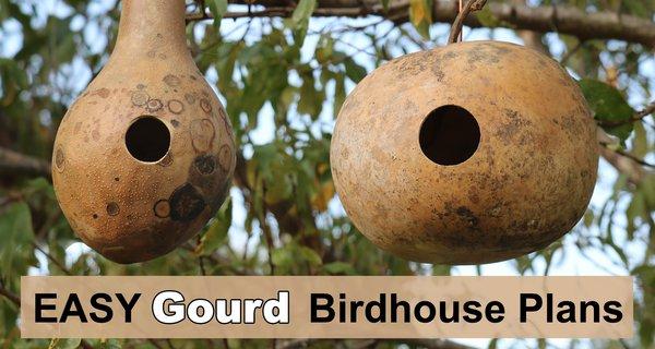How to Make a Gourd Birdhouse (DIY Nesting Box)