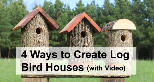 Learn how to create homemade bird houses from a natural log.  These free handmade wooden bird houses from a log are great for bluebirds, chickadees, flickers, house finchs, house sparrows, kestrels, nuthatches, owls, purple martins, tree swallows, warblers, woodpeckers and wrens.