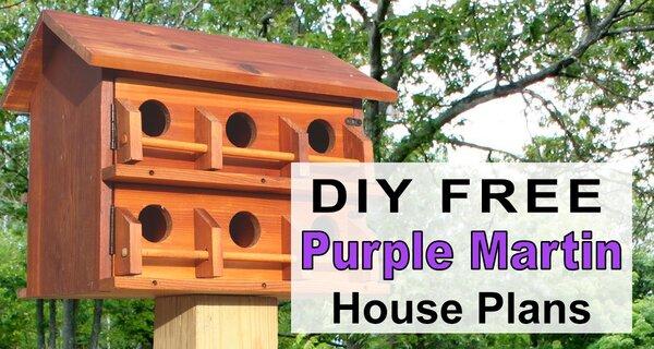 Purple Martin House Plans (Free Printable DIY Directions)