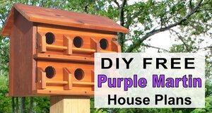 Purple Martin House Plans.