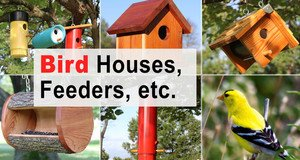 Bird Houses, Feeders & More.