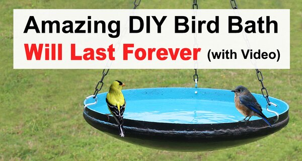 Learn how to create a free homemade bird bath from a recycled electric hot water heater. Can be used as hanging bird bath or placed on pedestal to attract feathered friends to your garden or back yard.  Great for bluebirds,  chickadees, flickers, house finches, house sparrows, kestrels, nuthatches, owls, purple martins, tree swallows, warblers, woodpeckers and wrens.