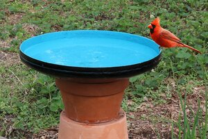 Homemade bird bath on a pedestal.