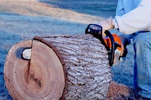 Ripping a log with a gas powered Stihl chainsaw.