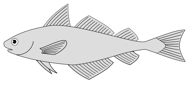 Free Tuna Fish Pattern template, stencil, clipart design, printable pattern, vector, cricut, scroll saw, svg, coloring page, quilting pattern.