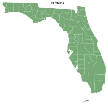 Free Florida county map, printable, state, outline, shape, county lines, pattern, template, download.