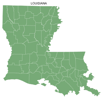 Free Louisiana county map, printable, state, outline, shape, county lines, pattern, template, download.