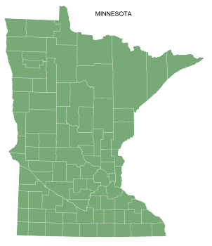 Free Minnesota county map, printable, state, outline, shape, county lines, pattern, template, download.