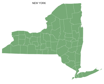 Free New York county map, printable, state, outline, shape, county lines, pattern, template, download.