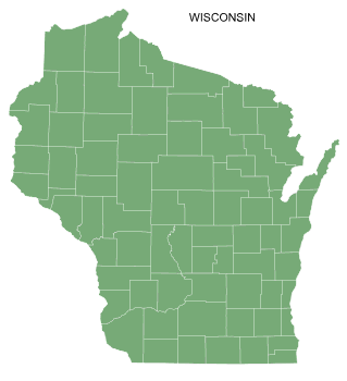 Free Wisconsin county map, printable, state, outline, shape, county lines, pattern, template, download.