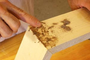 Fill screw holes with a combination of sawdust and glue.
