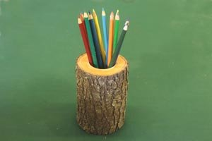 Pencil or pen holder from a log or branch.