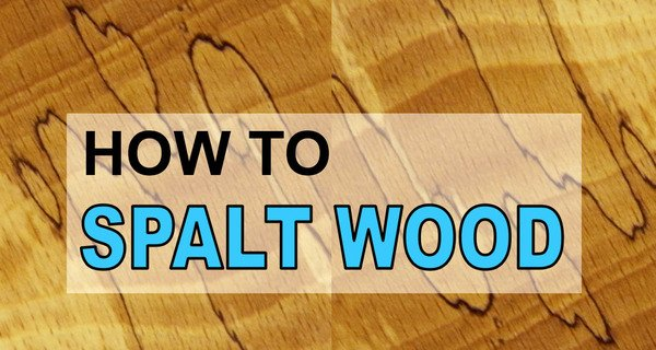 How to Make Spalted Wood (DIY Recipe for Spalting Lumber)